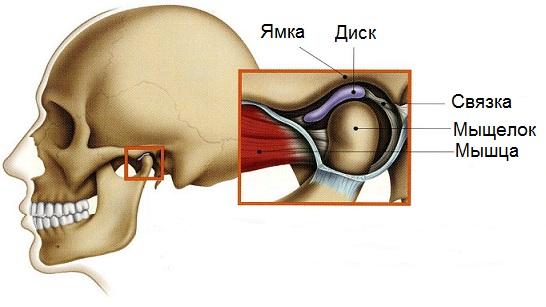 Нижнечелюстной сустав симптомы дренаж коленного сустава